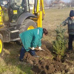 70 нови дръвчета засадиха в Мартен