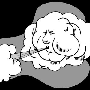 Предупреждение за силен вятър в 14 области от страната