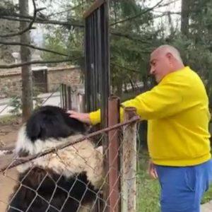 Борисов: Като се прибера, най-много се радва кучето