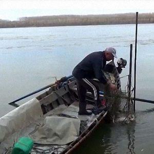 Рибари недоволстват: В Румъния ловят, при нас удължиха забраната